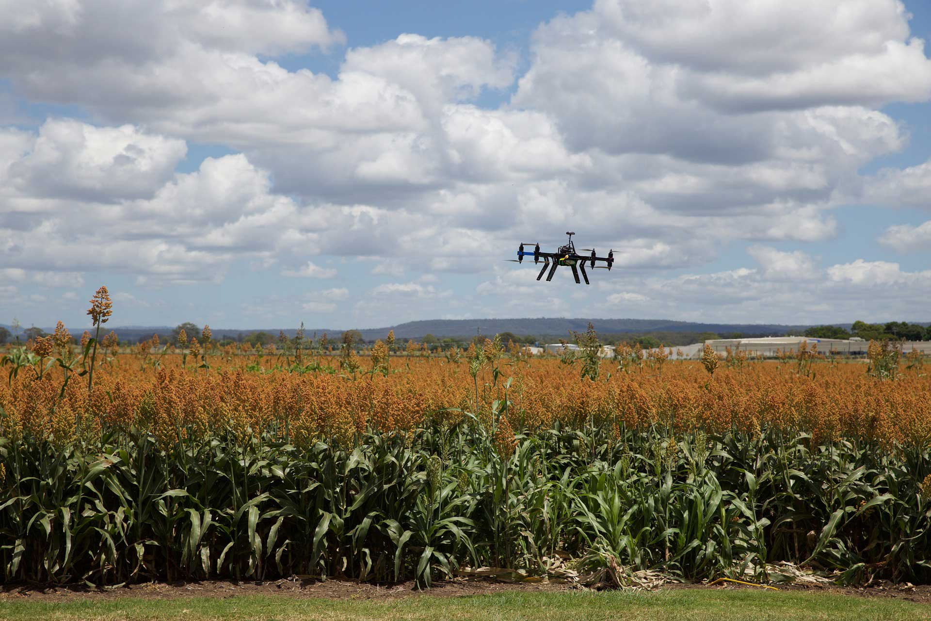 Crop Consulting Drones