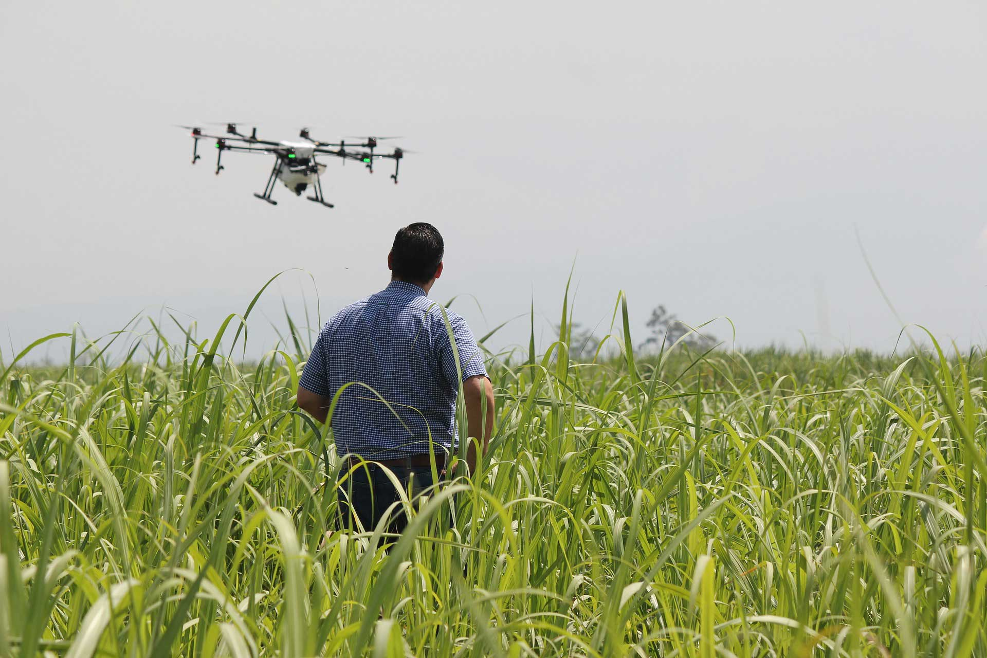 Crop Inspection Drones